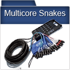 Multicore Snakes